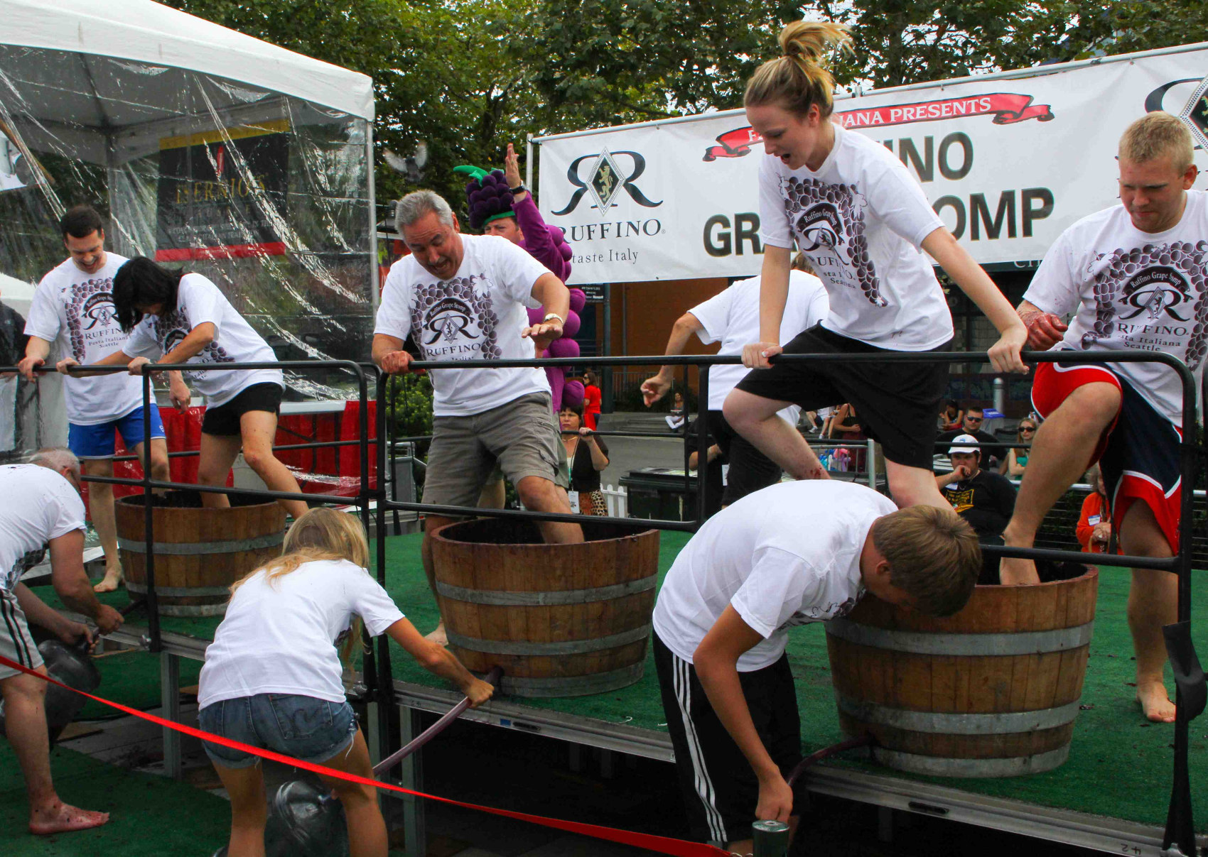 Grape Stomp, call for entries