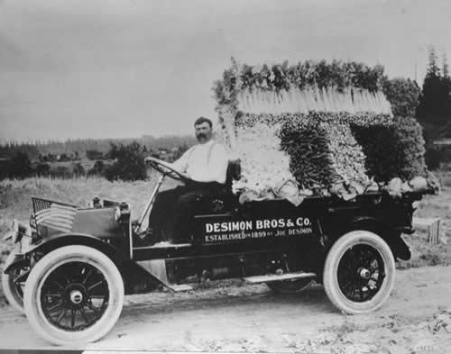 Photo of Joe Desimone on a farm produce truck