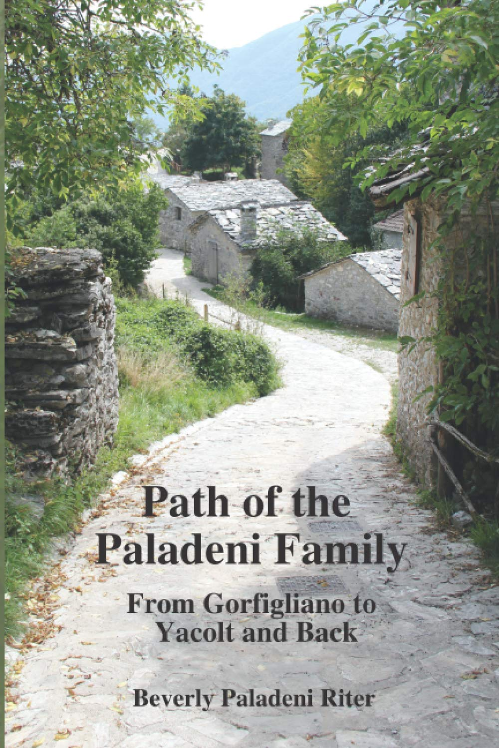 book cover for the Path of the Paladeni Family